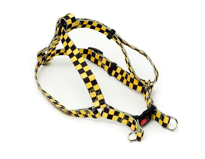 New Yorkie Dog Harness