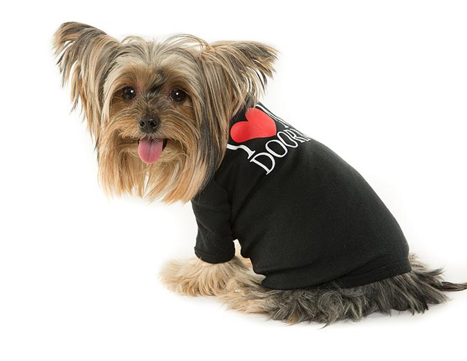 New Yorkie I Love My Doorman Dog t-shirt