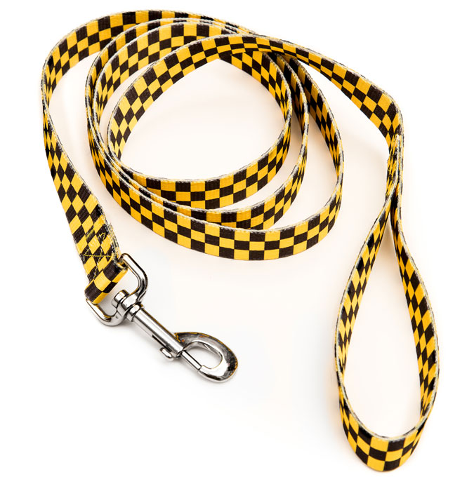New Yorkie Leash Alt